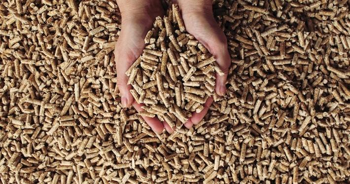 enplus wood pellets