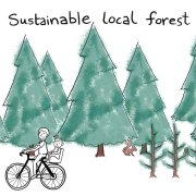 our sustainability story